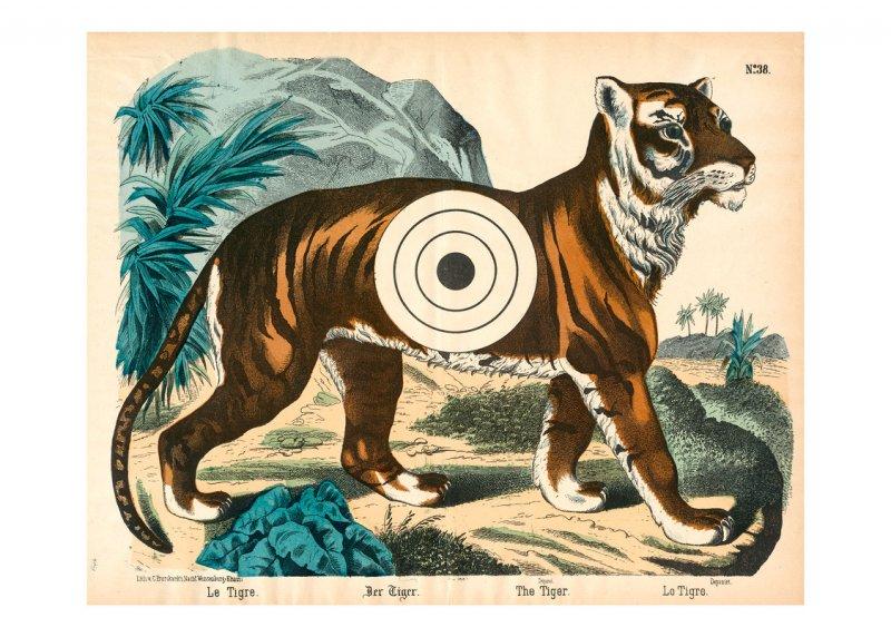 Zielscheibe – Tiger