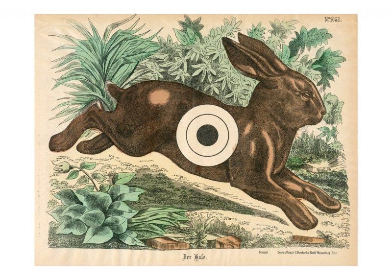 Zielscheibe – Hase